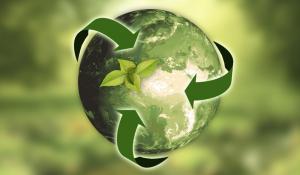 Brandspark Sustainability Blog